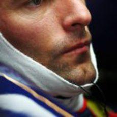 Webber concentrado