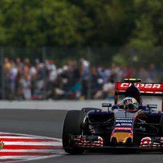 Sainz pilotando su Toro Rosso