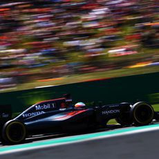 Fernando Alonso exprime su MP4-31