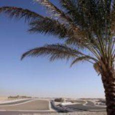 Desierto, asfalto y palmeras