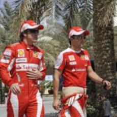 Fernando y Felipe en el circuito de Shakir