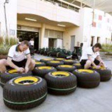 Los neumáticos de Lotus