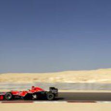 Timo en el desierto
