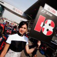 La 'pitbabe' de Sébastien Buemi en el GP de China 2011