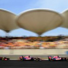 Los Toro Rosso ruedan en Shangai