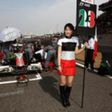'Pit babe' de Liuzzi en China 2011