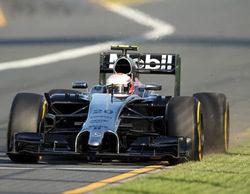 Jan Magnussen acompañará a Kevin Magnussen en el GP de Malasia 2014