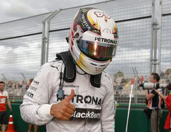 Lewis Hamilton se lleva la pole en una clasificación pasada por agua en el GP de Malasia 2014