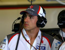 Adrian Sutil nuevo piloto reserva de Williams