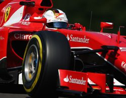 Mark Webber apoya a Vettel en el episodio del reventón de neumático en Spa