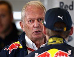 "Helmut Marko vindica a Max Verstappen: ""Ha demostrado estar por encima de la media"""
