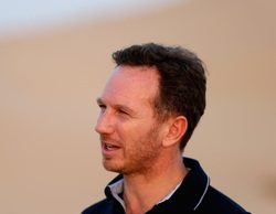 "Christian Horner: ""Será difícil superar a Mercedes en 2017"""