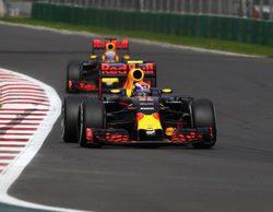 """Max Verstappen: """"Mi relación con Ricciardo es similar a la que tenía con Sainz"""""""