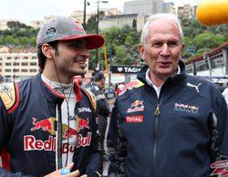 "Helmut Marko: ""Carlos Sainz es claramente el piloto reserva para Red Bull"""