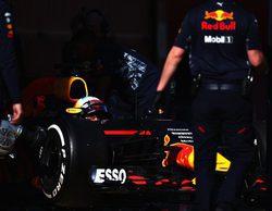 """Daniel Ricciardo: """"Ahora trazar las curvas 3 y 9 es increíble"""""""