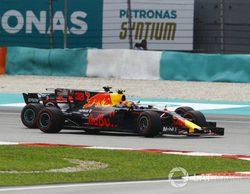 """Max Verstappen: """"Espero que el año que viene pueda pelearle a Hamilton el Campeonato"""""""