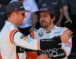 """Stoffel Vandoorne: """"Ha sido genial contar con Alonso, es uno de los mejores pilotos de la parrilla"""""""