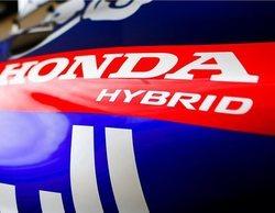 Red Bull y Toro Rosso, ilusionados con el fuerte paso adelante de Honda durante esta temporada