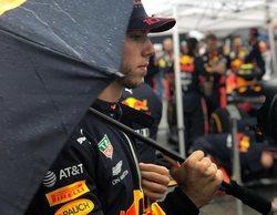 La actual alineación de pilotos de Red Bull se mantiene intacta hasta final de 2019, según Marko