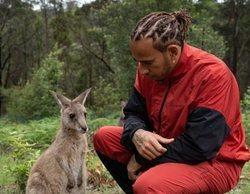 """Hamilton: """"Puede que ahora nos podamos sentir como los animales que viven en cautividad"""""""