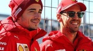 """Charles Leclerc: """"Al igual que con Ferrari, también me sentí intimidado con Seb"""""""