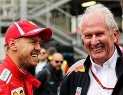 """Marko, sobre Vettel: """"La incertidumbre se hizo regular y la conducción no solía estar a su nivel"""""""