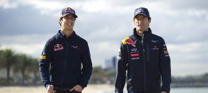Daniel Ricciardo sustituirá a Mark Webber en 2013, según Helmut Marko