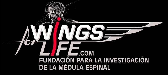 Wings For Life recauda 48.000 euros con la subasta de los monos de los seis Campeones del Mundo de la temporada 2012