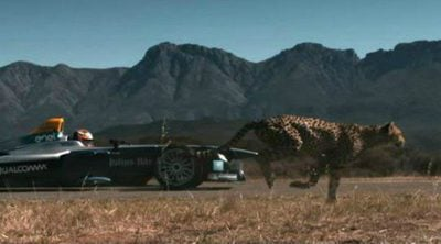 ¿Qué corre más: un guepardo o un Fórmula E? Jéan-Eric Vergné nos saca de dudas